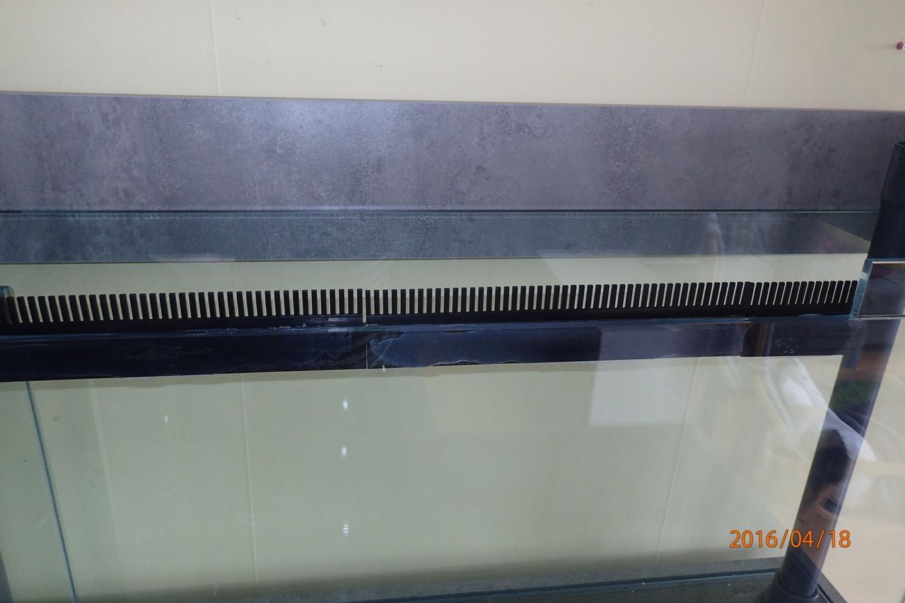 P4180008.JPG