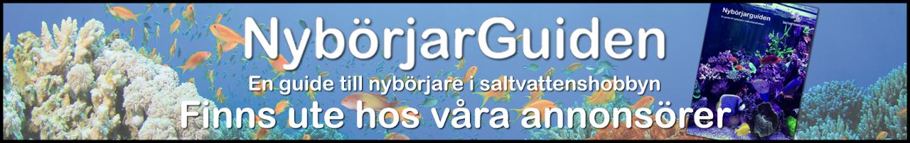 1217724566_Saltvattensguiden-Nybrjarguiden_banner.png.b2c0294c24c1b633205a9959c11effea.png