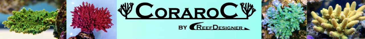 CoraroC.jpg